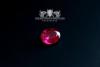 Traditions-Ring der Seefahrer Größe 58 Rubin-Rot