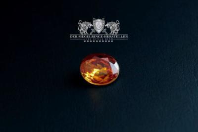 Traditions-Ring der Seefahrer Größe 68 Topas-Gelb